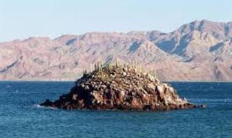 Foto de terreno comercial en venta en bahia de las animas n/a, bahía de los ángeles, ensenada, baja california, 3103566 No. 05