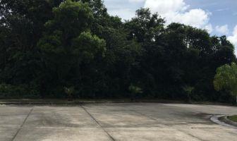 Foto de terreno habitacional en venta en Alfredo V Bonfil, Benito Juárez, Quintana Roo, 11455096,  no 01