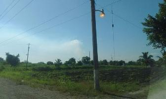 Foto de terreno comercial en venta en  , benito juárez (ejido), altamira, tamaulipas, 4433322 No. 01