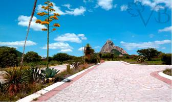 Foto de terreno habitacional en venta en bernal , bernal, ezequiel montes, querétaro, 17728880 No. 01