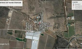 Foto de terreno habitacional en venta en  , bernal, ezequiel montes, querétaro, 11461869 No. 01