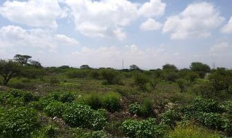 Foto de terreno habitacional en venta en  , bernal, ezequiel montes, querétaro, 13962504 No. 01