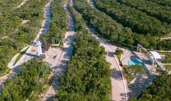 Foto de terreno habitacional en venta en  , bosque de cristo rey, solidaridad, quintana roo, 8496021 No. 01