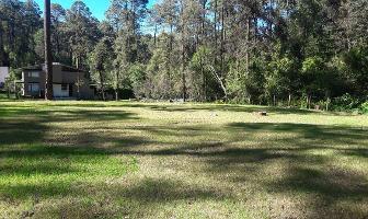 Foto de terreno habitacional en venta en bosque verde , valle de bravo, valle de bravo, méxico, 14356711 No. 01