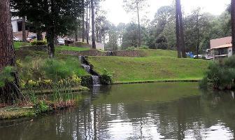 Foto de terreno habitacional en venta en bosque verde , valle de bravo, valle de bravo, méxico, 6169037 No. 01