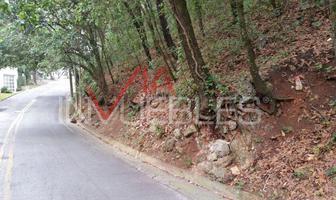 Foto de terreno habitacional en venta en  , bosques de san ángel sector palmillas, san pedro garza garcía, nuevo león, 13981076 No. 01