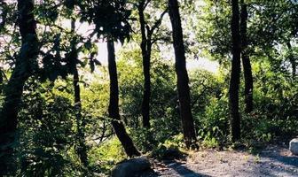 Foto de terreno habitacional en venta en bosques de san angel sector palmillas, san pedro garza garcía, nuevo león, 66290 , bosques de san ángel sector palmillas, san pedro garza garcía, nuevo león, 0 No. 01