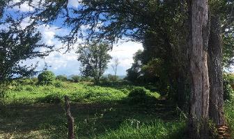Foto de terreno habitacional en venta en bugambilias s/n , paso de la comunidad, ocotlán, jalisco, 5765496 No. 01