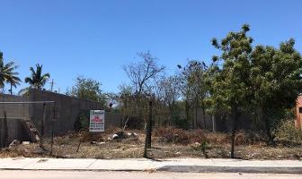 Foto de terreno habitacional en venta en calafia , calafia, la paz, baja california sur, 0 No. 01
