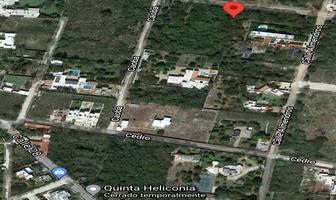 Foto de terreno habitacional en venta en calle ceiba (7) 164, cholul, mérida, yucatán, 0 No. 01