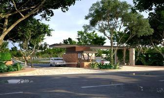 Foto de terreno habitacional en venta en calle , conkal, conkal, yucatán, 0 No. 01