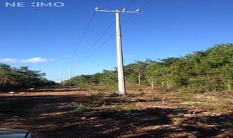 Foto de terreno industrial en venta en calle ebano , supermanzana 312, benito juárez, quintana roo, 14736867 No. 01