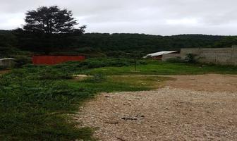 Foto de terreno habitacional en venta en calle manzanilla , la garita, san cristóbal de las casas, chiapas, 14296227 No. 01