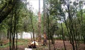 Foto de terreno habitacional en venta en calle san agust?n , cuadrilla de dolores, valle de bravo, m?xico, 5723479 No. 01