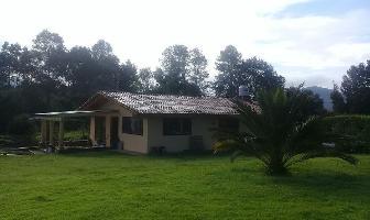 Foto de casa en renta en camino a acatitlan , valle de bravo, valle de bravo, méxico, 6936059 No. 01