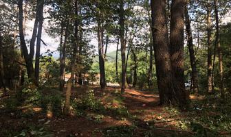 Foto de terreno habitacional en venta en camino a avándaro; colonia acatitlán , valle de bravo, valle de bravo, méxico, 6448421 No. 01