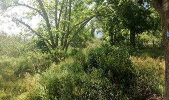 Foto de terreno habitacional en venta en camino a la palmilla , la hibernia, saltillo, coahuila de zaragoza, 3455482 No. 01