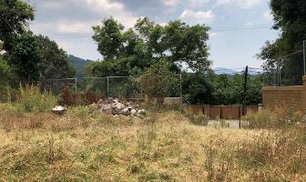 Foto de terreno habitacional en venta en camino a los alamos , valle de bravo, valle de bravo, méxico, 14868858 No. 01