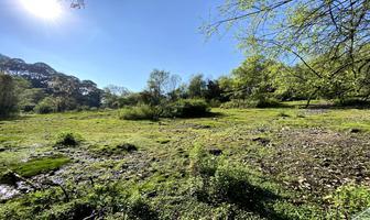 Foto de terreno habitacional en venta en camino a los álamos , valle de bravo, valle de bravo, méxico, 17665217 No. 01