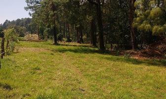 Foto de terreno habitacional en venta en camino al aguacate , cerro gordo, valle de bravo, méxico, 5103350 No. 03