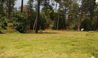 Foto de terreno habitacional en venta en camino al aguacate , cerro gordo, valle de bravo, méxico, 5723429 No. 01