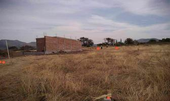Foto de terreno habitacional en venta en camino al carcamo , villas cervantinas, guanajuato, guanajuato, 0 No. 01
