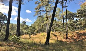 Foto de terreno habitacional en venta en camino sin nombre, san gabriel ixtla , valle de bravo, valle de bravo, méxico, 6442078 No. 01