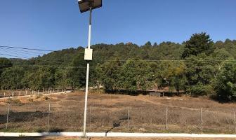 Foto de terreno habitacional en venta en camino sin nombre , valle de bravo, valle de bravo, méxico, 5884534 No. 01