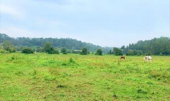 Foto de terreno habitacional en venta en camino sin nombre , valle de bravo, valle de bravo, méxico, 9605903 No. 03