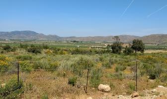 Foto de terreno habitacional en venta en camino vecinal , valle de san telmo, ensenada, baja california, 10888218 No. 02