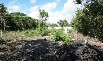 Foto de terreno habitacional en venta en  , campestre, benito juárez, quintana roo, 0 No. 01