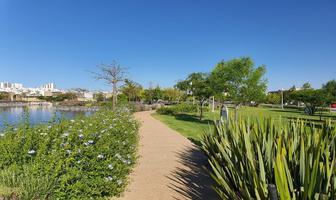 Foto de terreno habitacional en venta en campo real , residencial el refugio, querétaro, querétaro, 17829041 No. 01