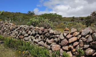 Foto de terreno habitacional en venta en  , cañada de las flores, san miguel de allende, guanajuato, 14188049 No. 01