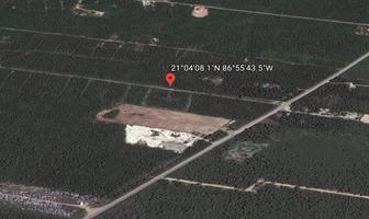Foto de terreno habitacional en venta en  , cancún centro, benito juárez, quintana roo, 18453542 No. 01