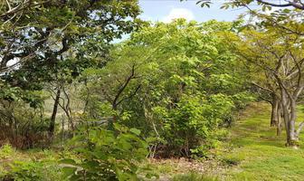 Foto de terreno habitacional en venta en carretera a colorines kilometro 4.5 , valle de bravo, valle de bravo, méxico, 17874292 No. 01