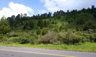 Foto de terreno habitacional en venta en carretera a los azufres , san pedro jacuaro, hidalgo, michoacán de ocampo, 5582674 No. 01