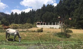 Foto de terreno habitacional en venta en carretera a mineral del monte 500, mineral del monte centro, mineral del monte, hidalgo, 0 No. 01