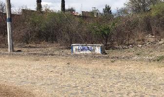 Foto de terreno habitacional en venta en carretera a san juan , santa rosa, ixtlahuacán de los membrillos, jalisco, 4646848 No. 03