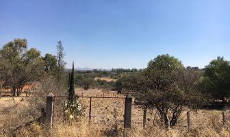 Foto de terreno habitacional en venta en carretera al niagara , salto de los salados, aguascalientes, aguascalientes, 6331003 No. 01