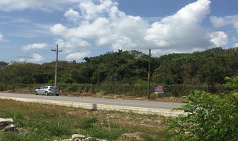 Foto de terreno habitacional en venta en carretera cancun- playa del carmen , cancún centro, benito juárez, quintana roo, 0 No. 01