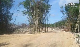 Foto de terreno habitacional en venta en carretera estatal tulum-cobá , tulum centro, tulum, quintana roo, 14328097 No. 01