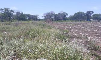 Foto de terreno habitacional en venta en carretera federal 307 chetumal cancun 307, mahahual, othón p. blanco, quintana roo, 15447151 No. 01