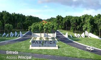 Foto de terreno habitacional en venta en carretera federal mérida - tizimín , muxupip, muxupip, yucatán, 5440385 No. 01