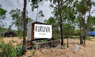 Foto de terreno habitacional en venta en carretera federal , tulum centro, tulum, quintana roo, 0 No. 01