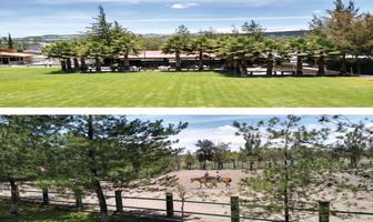 Foto de terreno habitacional en venta en carretera santa bárbara-huimilpan 3, arroyo hondo, corregidora, querétaro, 12522239 No. 01