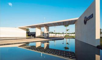 Foto de terreno habitacional en venta en carretera temozon norte , temozon norte, mérida, yucatán, 0 No. 01