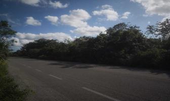 Foto de terreno habitacional en venta en carrtera tulum coba kilometro 26 kilometro 26 , tulum centro, tulum, quintana roo, 19352826 No. 01