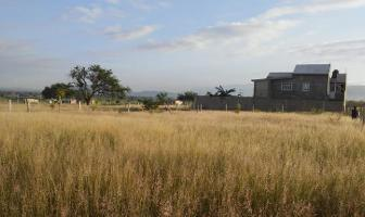 Foto de terreno habitacional en venta en cedros 00, zaachila, villa de zaachila, oaxaca, 8874190 No. 04
