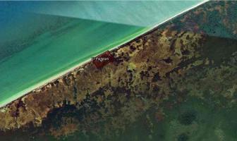 Foto de terreno habitacional en venta en  , celestun, celestún, yucatán, 12170446 No. 01