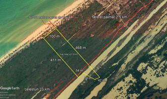 Foto de terreno habitacional en venta en  , celestun, celestún, yucatán, 12175853 No. 01